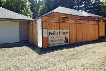 Feline Friends' Cat House